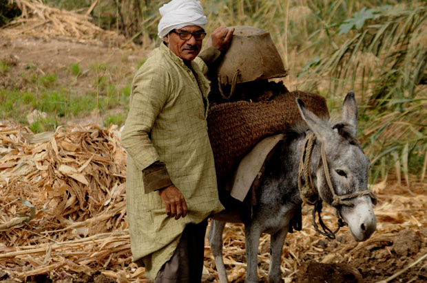 Most men in Deir Al-Maymun work in agriculture or the local quarry.