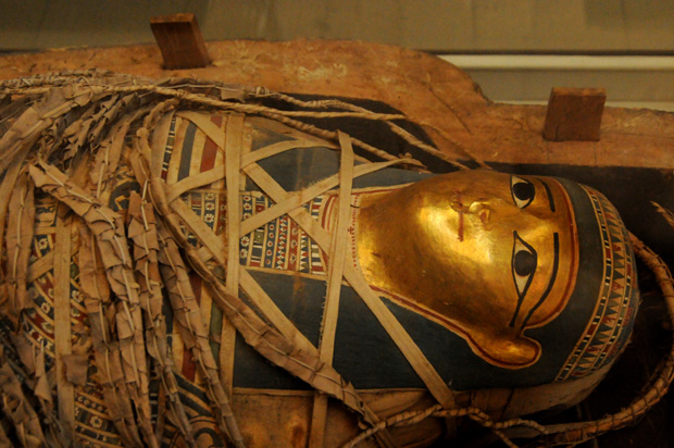 "Known at ""The Gilded Lady,"" this mummy's headdress is made of cartonnage (glued layers of papyrus or linen) and covered with gilding. The golden skin signifies divinity."