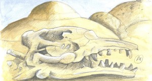 The skull of the extinct Basilosaurus isis with Wadi El-Hitan imperceptible in the background.