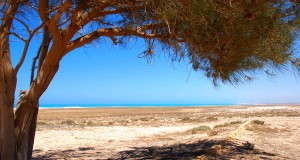 The coast at El Alamein near the German cemetery.