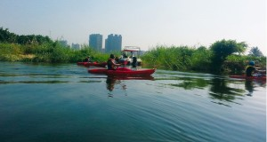 kayaking nile birdwatching nature notes